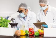 Gıda Güvenliğinde Yetki ve Sorumluluklar