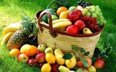 Organik Tarımda Aktif Bitki Koruma Yöntemleri 1