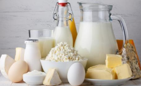 Süt Proteini Alerjisi ve Süt Alerjen Kiti